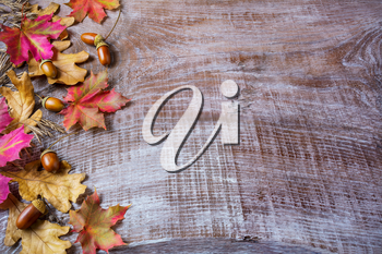 Thanksgiving  concept with acorn and fall leaves on wooden background. Thanksgiving background with fall leaves. Fall background. Copy space.
