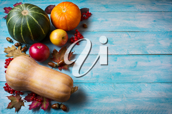 Thanksgiving  greeting with pumpkins on blue wooden background. Thanksgiving background with seasonal vegetables and fruits. Copy space